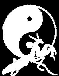 Wushu Riesa e.V.